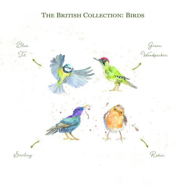 Kate of Kensington British Collection Birds Medium - Breeds